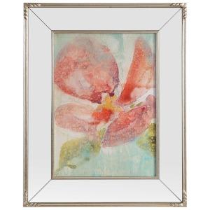 Veiled Poppy Framed Print