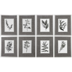 Sepia Gray Leaves Framed Prints, S/8