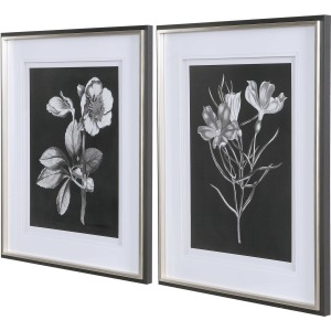Black & White Flowers Framed Prints, S/2