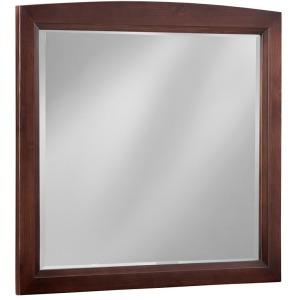 Transitions Mirror