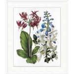 Vintage Flora 3
