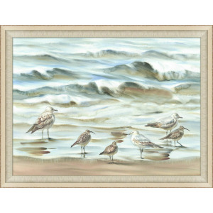 Sandpipers and Sea Gulls