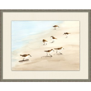Sanibel Sandpipers 2