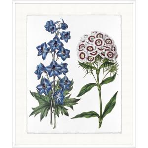 Vintage Flora 1