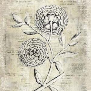 Antiqued Bloom II