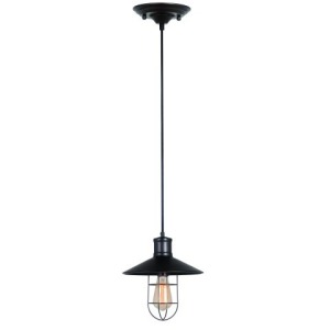 1 Light Pendant in Black Fini